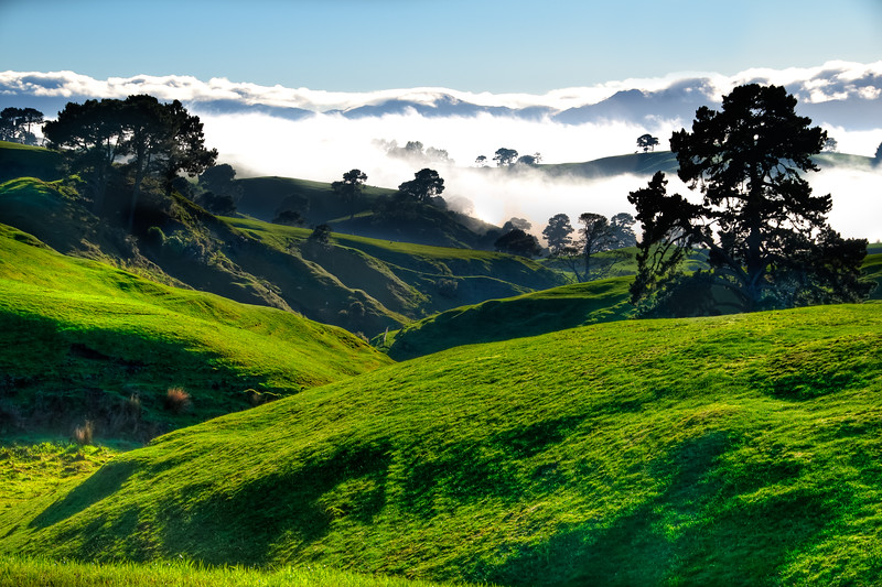 Green Hill Country (2)