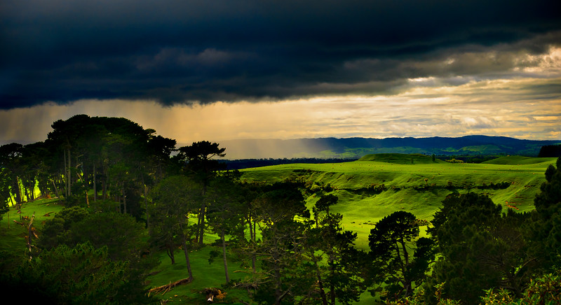 A Passing Shower<br /> The Shire