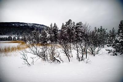 Contrasts Heidal Norway