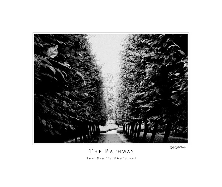 The Pathway<br /> <br /> Limited Edition Print.<br /> <br /> Five will be sold and then the image will be removed.