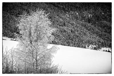A World of Black & White Heidal Norway