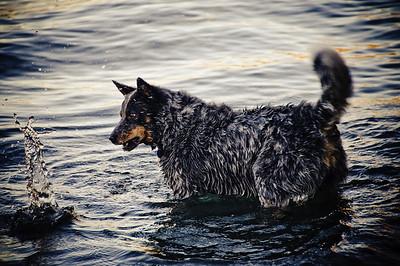 Jake at Glendhu Bay.