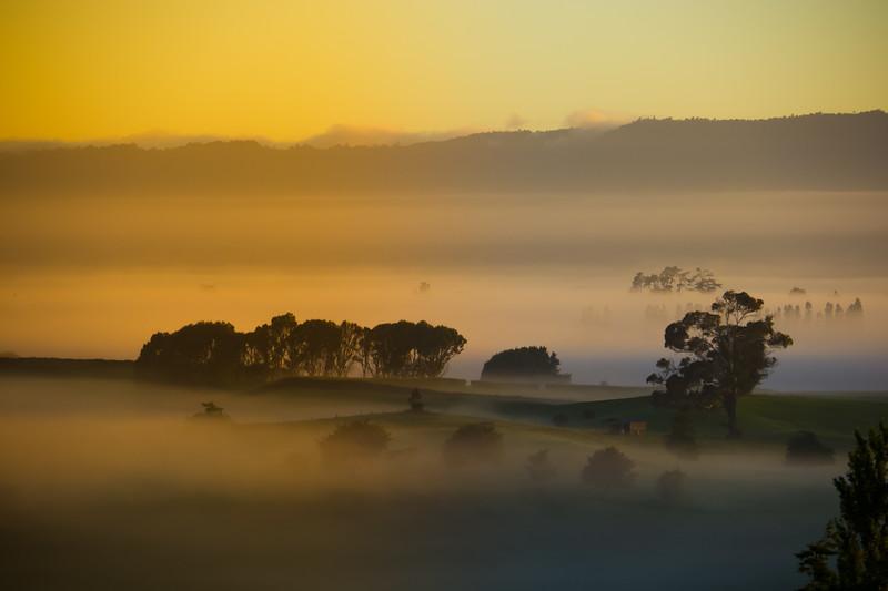 Piarere Sunrise