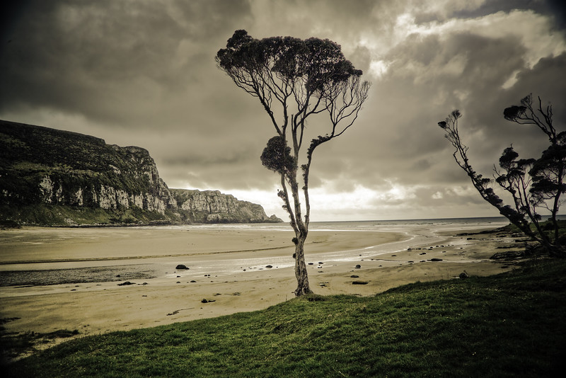 Purakaunui Bay in the Catlins<br /> Used as the hilltop for Cair Paravel in The Lion, The Witch & The Wardrobe.