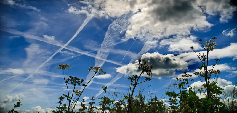 The Battle of Britain<br /> 15 September 1940<br /> <br /> What did we earth-bound make of it? A tangle<br /> Of vapour trails, a vertiginously high<br /> Swarming of midges, at most a fiery apgel<br /> Hurled out of heaven, was all we could descry.<br /> <br /> How could we know the agony and pride<br /> That scrawled those fading signatures up there,<br /> And the cool expertise of them who died<br /> Or lived through that delirium of the air<br /> <br /> Grounded on history now, we re-enact<br /> Such lives, such deaths. Time, laughing out of court<br /> The newspaper heroics and the faked<br /> Statistics, leaves us only to record.<br /> <br /> What was, what might have been fighter and bomber<br /> The tilting sky, tense moves and counterings;<br /> Those who outlived that legendary summer;<br /> Those who went down, it's sunlight on their wings.<br /> <br /> And you, unborn then, what will you make of it-<br /> This shadow-play of battles long ago?<br /> Be sure of this: they pushed to the uttermost limit<br /> Their luck, skill, nerve. And they were young like you.