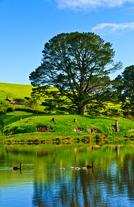 Hobbiton Movie Set from The Water (C) RST / Ian Brodie