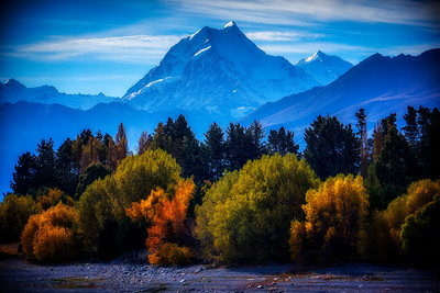 Autumn near Lake Pukaki