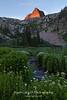 Arrow Peak Morning