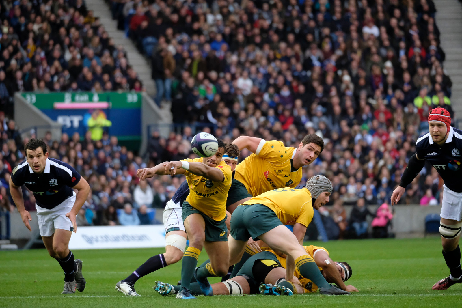 Scotland vs Australia - Autumn Test