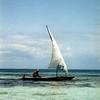 Dhow on the Indian Ocean, Zanzibar