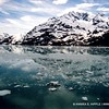 Early summer in Glacier Bay National Park, Alaska