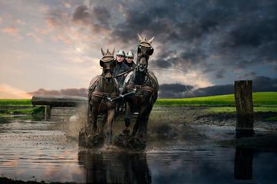 2HP | Slabroekse Paardendagen