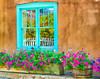 Tourquoise Window