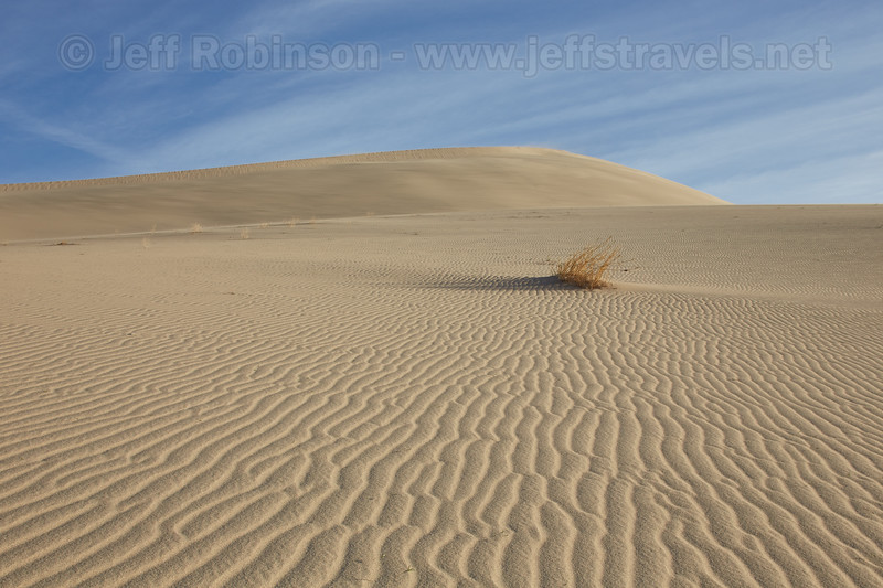 (3/10/2016, Eureka Dunes, Death Valley trip)<br /> TS-E45mm f/2.8 @ 45mm f/11 1/250s ISO200