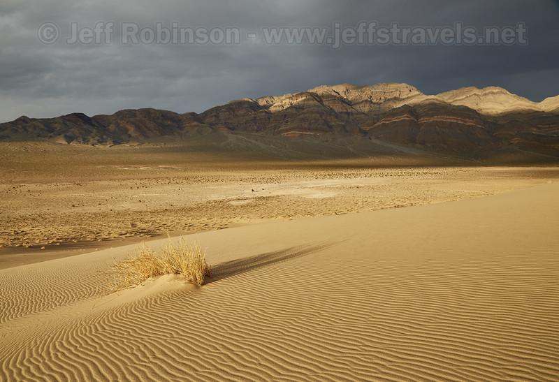 (3/8/2016, Eureka Dunes, Death Valley trip)<br /> EF24-105mm f/4L IS USM @ 24mm f/11 1/200s ISO320