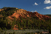 Dark-red hills and hoodoos and dark-green trees under partly-cloudy blue sky (9/3/2013, 3097 Birdseye Trail, Red Canyon, Dixie NF, 2013 Utah)<br /> EF24-105mm f/4L IS USM @ 60mm f/7 1/250s ISO400