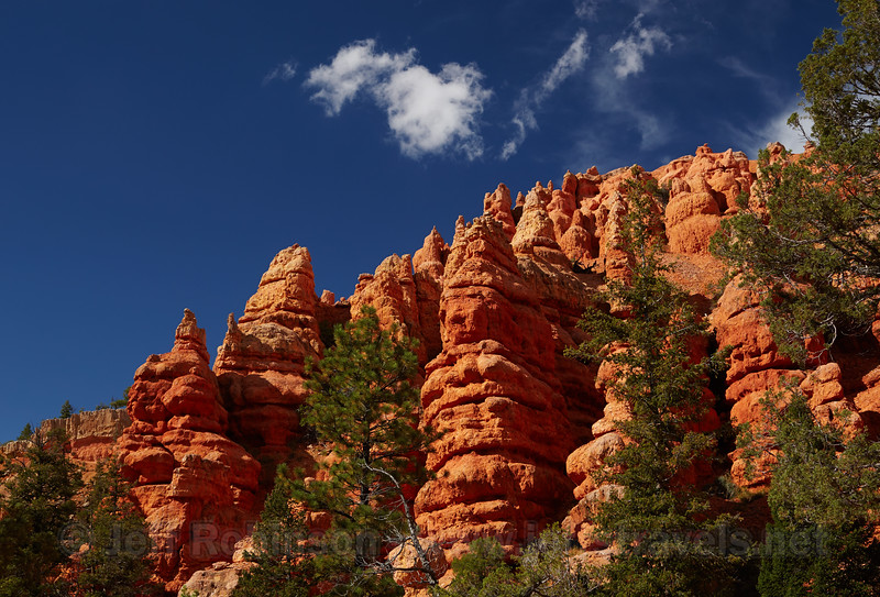 Vivid red hoodoos & ridges along with dark green trees are on the side of the slope under partly-cloudy deep-blue sky (9/3/2013, 3074 Pink Ledges Trail, Red Canyon, Dixie NF, 2013 Utah)<br /> EF24-105mm f/4L IS USM @ 45mm f/8 1/320s ISO400