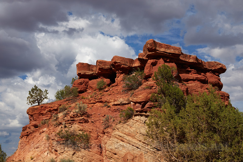 (9/6/2013, Kanab Canyon / Angel Canyon Rd., 2013 Utah)<br /> EF24-105mm f/4L IS USM @ 60mm f/9 1/500s ISO200