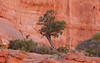 (10/5/2014, Park Avenue viewpoint, Arches NP)<br /> EF100-400mm f/4.5-5.6L IS USM @ 220mm f/7 1/320s ISO1600