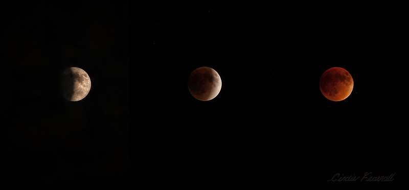 Lunar Eclipse 2015