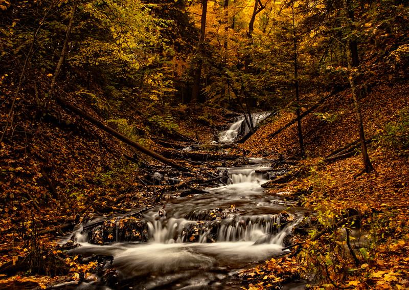 Weaver Creek