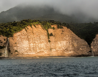 Great Barrier Island, New Zealand