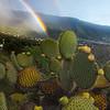 Arcoiris sobre Breña Alta