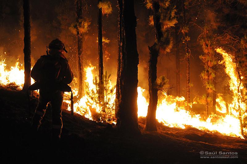 Incendio, La Palma, verano 2012