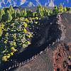 Transvulcania 2014, a  su paso por La Ruta de Los Volcanes. Isla de La Palma