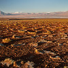 Reserva nacional de fauna andina Eduardo Abaroa. Bolivia