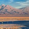 Desierto de Atacama. Chile