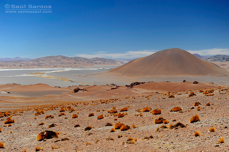 Salar del Hombre Muerto, Altiplano Andino, Catamarca, Argentina.