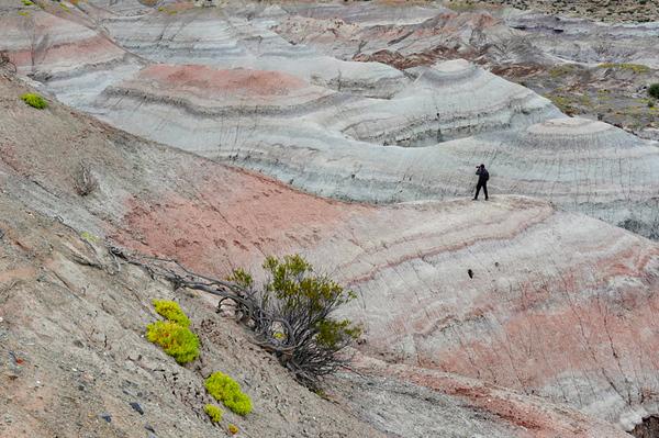 Valle Pintado, Ischigualasto, Valle de La Luna, San Juan. Argentina
