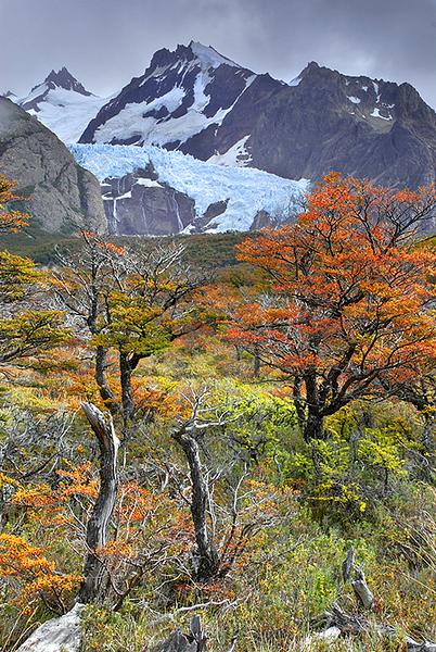 Glaciar piedras Blancas, El Chalten