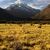 Volcan Lanin, Neuquen,Region de Los Lagos. Patagonia Argentina