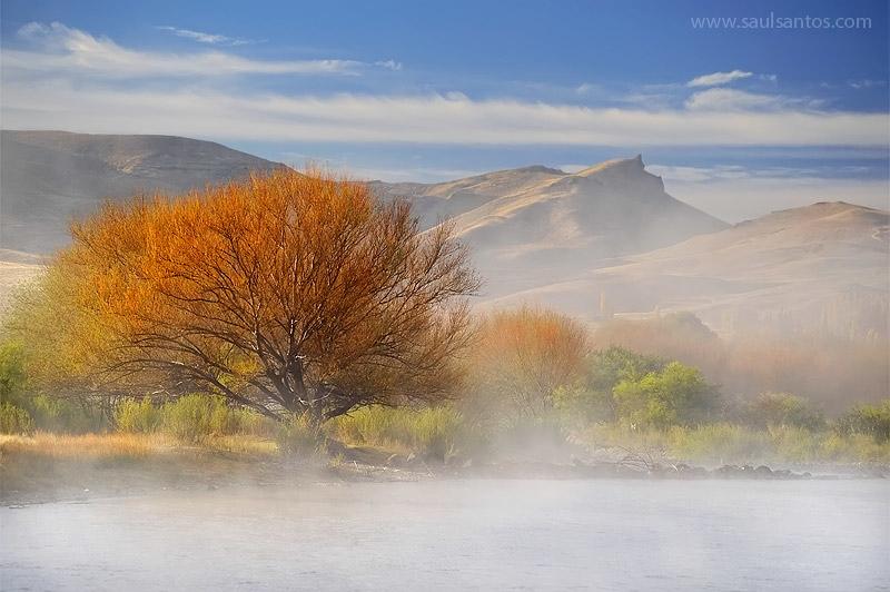 Rio Chimehuin, Junin de Los Andes, Region de Los Lagos. Patagonia Argentina