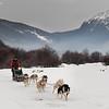 Trineo de perros, Valle las Cotorras, Ushuaia, Tierra del Fuego, Patagonia. Argentina