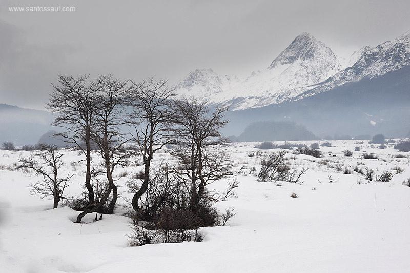 Ushuaia, Tierra del Fuego, Patagonia. Argentina