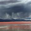 Laguna Colorada, Reserva nacional de fauna andina Eduardo Abaroa. Bolivia