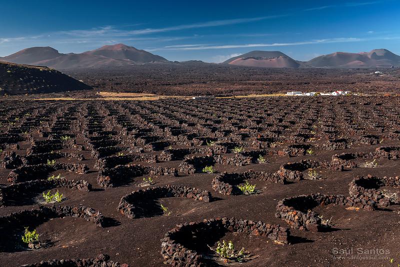 Atardecer en La Geria, con Timanfaya al fondo. Lanzarote. Islas Canarias