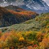 Otoño, Parque Nacional Torres del Paine. Patagonia Chilena