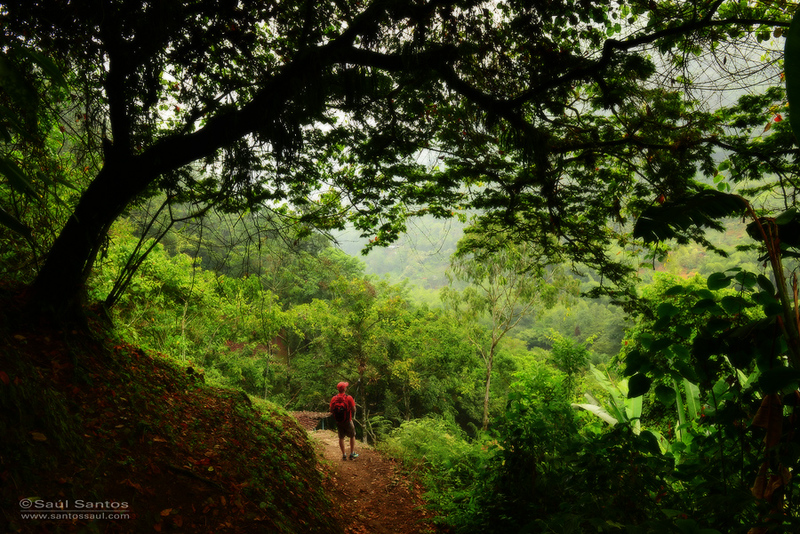 Parque Nacional de Los Farallones de Cali.  Cali, Colombia
