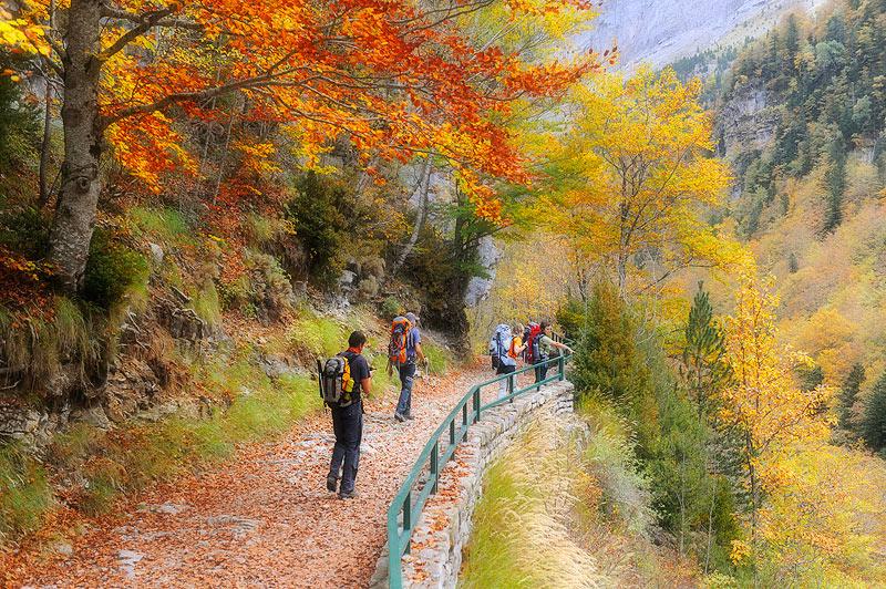 Pirineos, Parque Nacional de Ordesa, Valle de Ordesa