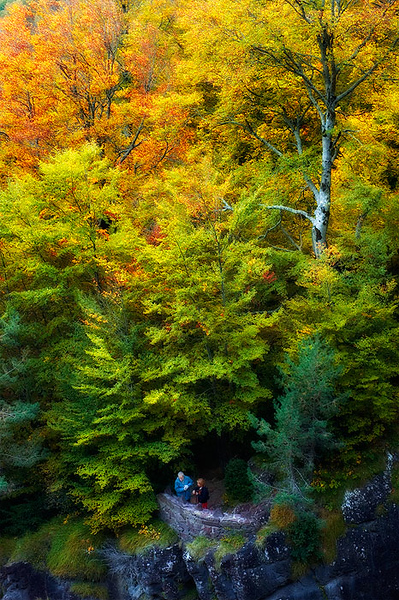 Pirineos, Parque Nacional de Ordesa