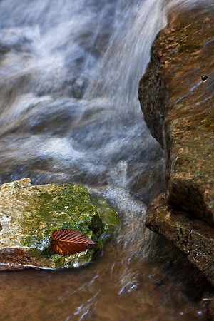 Waterfall with Leaf