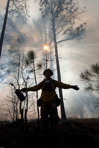 Prescribed fire personnel with subburst through Longleaf Pine trees in background.