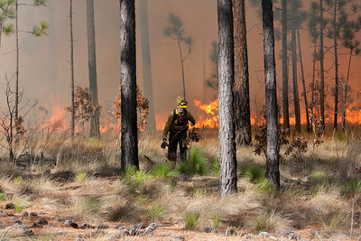 Prescribed fire personnel during ignition phase.