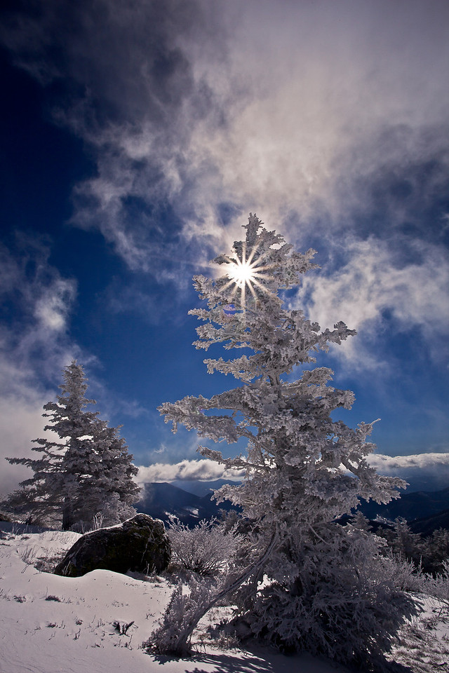 Roan Mountain Sunburst