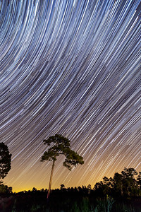 Lone Pine Star Trails 2015