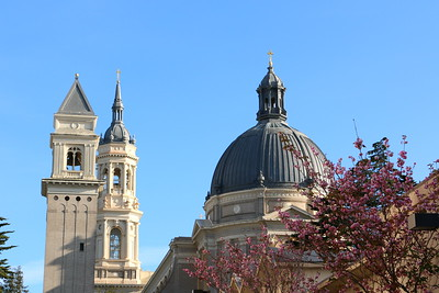 Saint Ignatius Church on the campus of the University of San Francisco (USF). It was built in 1914.  サンフランシスコ大学(USF)キャンパス内にある1914年に建てられた聖イグナティウス教会。